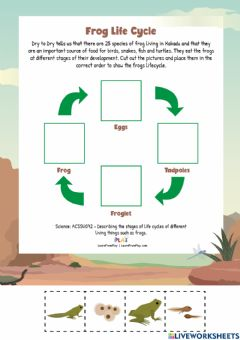 Interactive worksheet Dry to Dry - Life Cycle