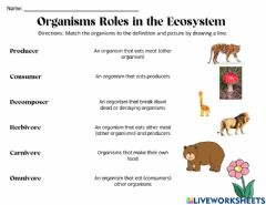 Ficha interactiva Organisms Role in the Ecosystem