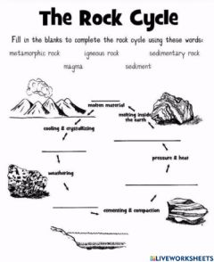 Interactive worksheet The Rock Cycle