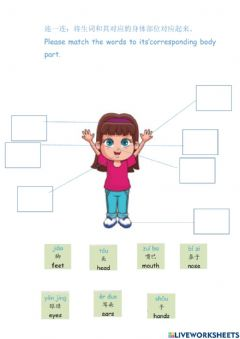 Interactive worksheet Body parts-Chinese KG
