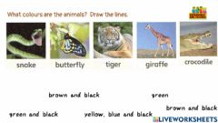 Interactive worksheet Worksheet for CAMOUFLAGE ANIMALS Super Minds  UNIT 3 PET SHOW PAGE 42,43 WHAT COLOURS ARE THE ANIMALS