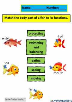 Ficha interactiva Parts of fish and functions