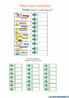 Ficha interactiva Pets and numbers