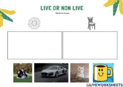 Interactive worksheet Live and non live