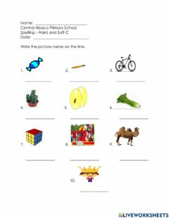 Interactive worksheet Hard and Soft C
