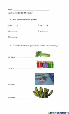 Interactive worksheet Hard and Soft C and G