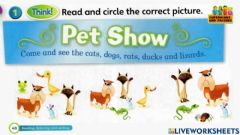 Interactive worksheet Worksheet for super  minds page 40 unit 3 the pet show  by superminds and friends students book semakan kssr cefr