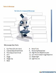 Interactive worksheet Parts of a Microscope