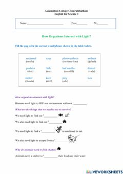 Ficha interactiva How Organisms Interact with Light worksheet
