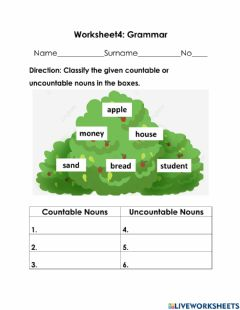 Interactive worksheet Countable and Uncountable noun