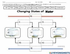 Interactive worksheet The changing states of water