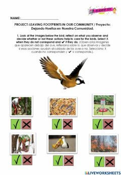 Interactive worksheet Caring for birds