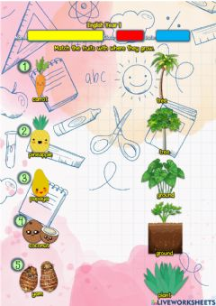 Ficha interactiva Year 1: Lunchtime 6 - Where do they grow?