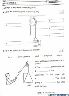 Interactive worksheet Pulley