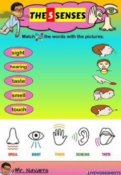 Interactive worksheet The 5 Senses (Match the words with the pictures)