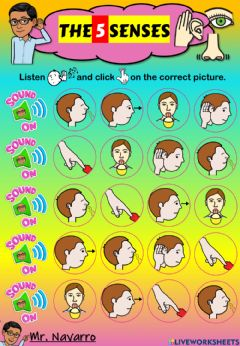 Interactive worksheet The 5 Senses (Listen and click)