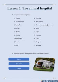 Interactive worksheet Lesson 6. The animal hospital (1)