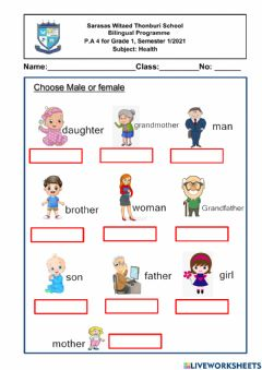 Interactive worksheet Male and female
