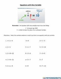 Interactive worksheet Equations with One Variable