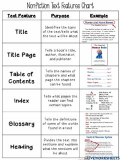 Interactive worksheet Text Features Chart