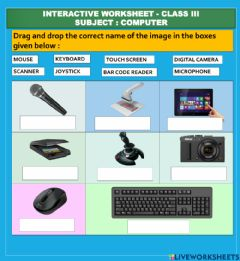 Interactive worksheet COMPUTER WORKSHEET ON INPUT OUTPUT DEVICES